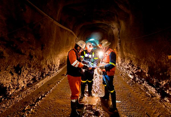 Industria Minera y de Petróleo